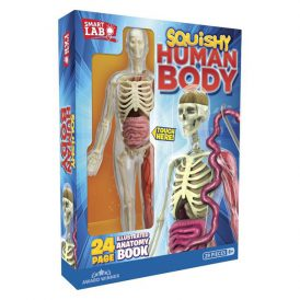 Squishy Human Body Anatomy Kit Smart Lab